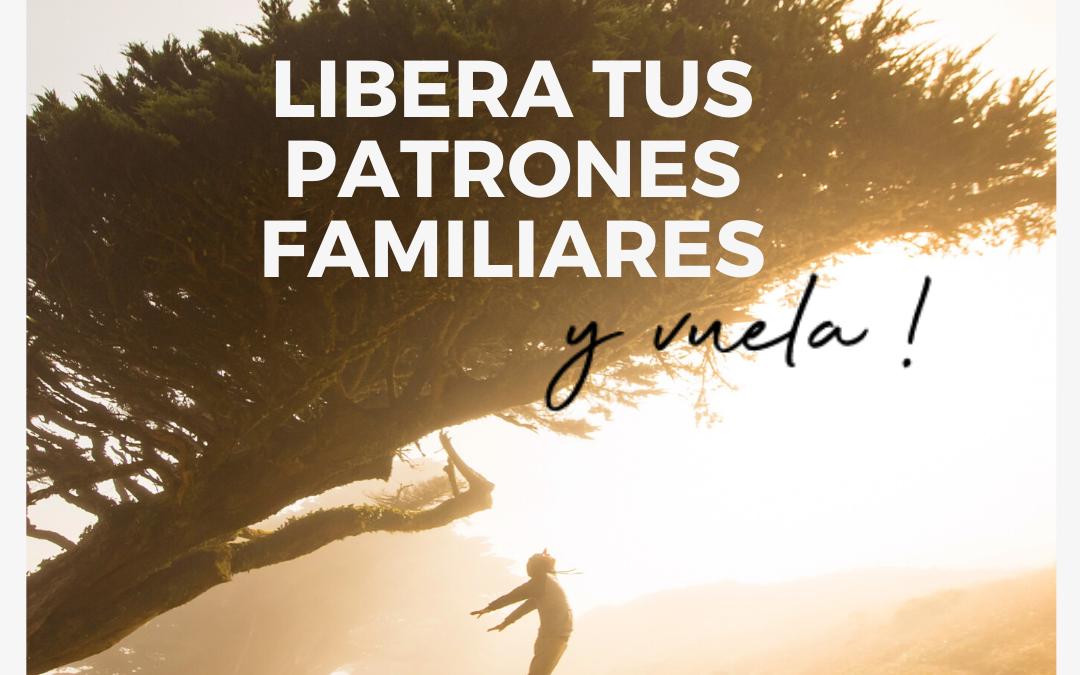 TALLER PRESENCIAL: LIBERA TUS PATRONES FAMILIARES